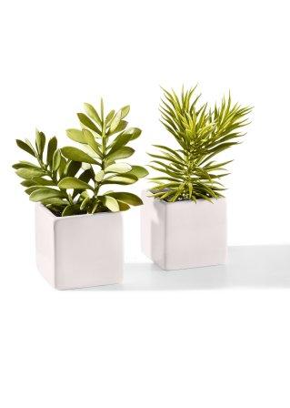 Les Plantes Grasses Artificielles En Pot De C Ramique Ens 2 Pces Vert Blanc Maison