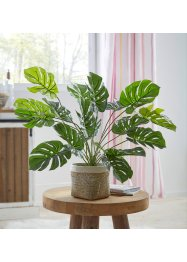 Plante artificielle Monstera, bpc living bonprix collection