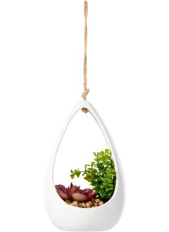 Vase suspendu avec succulentes, bpc living bonprix collection