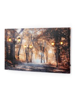 Tableau LED motif allée, bpc living bonprix collection