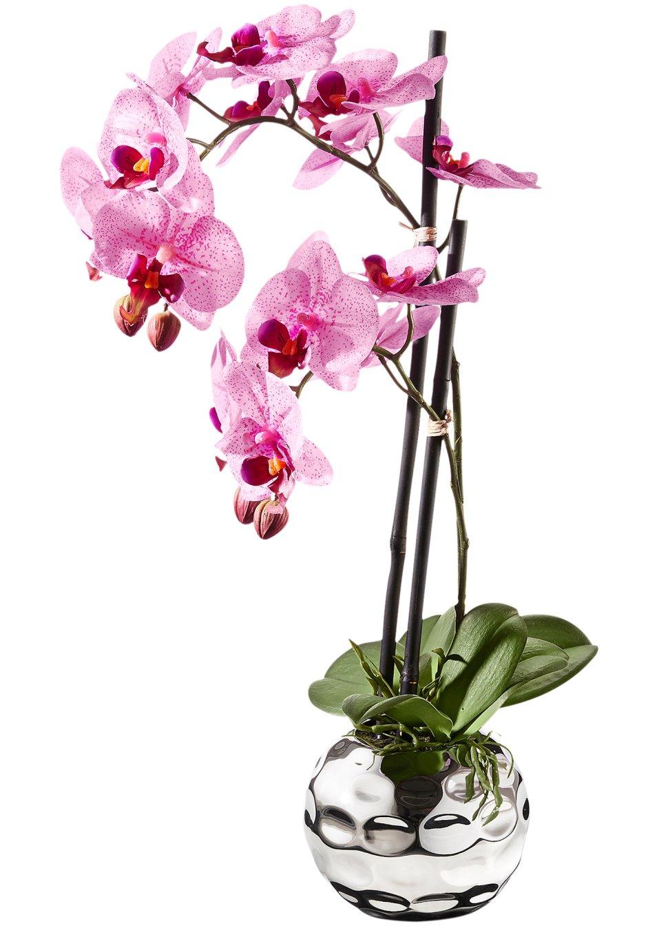 orchid e artificielle fuchsia argent maison. Black Bedroom Furniture Sets. Home Design Ideas